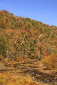 Obed Wild and Scenic River, Nemo Bridge area, Wartburg, Tennessee, USA