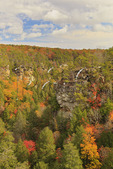Gorge Trail, Cane Creek Canyon, Fall Creek Falls State Resort Park, Pikeville, Tennessee, USA
