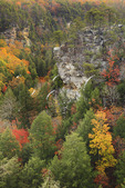 Cane Creek Canyon, Fall Creek Falls State Resort Park, Pikeville, Tennessee, USA