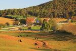 Farm in Brownsburg, Shenandoah Valley, Virginia