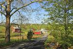 Rural Road, Browntown, Shenandoah Valley, Virginia, USA