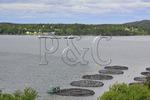 North Atlantic Salmon Farm, Welshpool, Campobello Island, New Brunswick, Canada