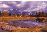 Beaver Dam, Grand Teton National Park, Wyoming