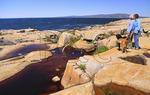 Schoodic Peninsula, Acadia National Park, Maine, USA