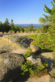 Day Mountain Carriage Road, Acadia National Park, Maine, USA