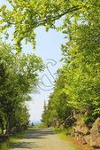 , Jordan Stream loop Carriage Road, Acadia National Park, Mount Desert Island, Maine, USA