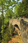 Cliffside Bridge, Jordan Stream loop Carriage Road, Acadia National Park, Mount Desert Island, Maine, USA