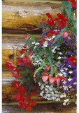 Flower decoration on cabin wall, Glenn Highway, Chickaloon, Alaska