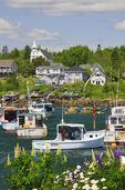 Harbor, Corea, Maine, USA