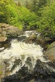 Waterfall Beside Tuckerman Ravine Trail, Pinkham Notch, White Mountains, New Hampshire, USA