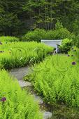 Thuya Gardens, Northeast Harbor, Mount Desert Island, Maine, USA