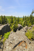 Pot Hole, South Prong Trail, Flat Rock and Roaring Plains, Dolly Sods, Dry Creek, West Virginia, USA