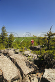 South Prong Trail, Flat Rock and Roaring Plains, Dolly Sods, Dry Creek, West Virginia, USA
