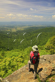 View From Appalachian Trail, Franklin Cliff, Shenandoah National Park, Virginia, USA