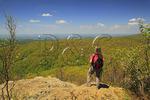 View From Appalachian Trail, Compton Peak, Shenandoah National Park, Virginia, USA
