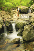 Cascade Beside Cedar Run Trail, Shenandoah National Park, Virginia, USA