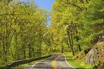 Skyline Drive North RT 211, Shenandoah National Park, Virginia, USA