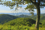 Brown Mountain Overlook, Shenandoah National Park, Virginia, USA