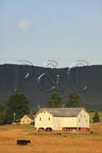 Moonset over farm in Swoope, Shenandoah Valley, Virginia, USA
