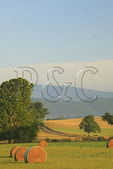 Hay Bales and Farm, Swoope, Shenandoah Valley, Virginia, USA