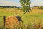 Hay Bales and Farm, Swoope, Shenandoah Valley, Virginia, USA