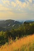 Two Mile Run Overlook, Shenandoah National Park, Virginia, USA