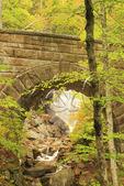 Waterfall Bridge, Hadlock Brook Loop Carriage Road, Acadia National Park, Maine, USA