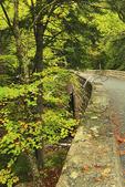 Hemlock Bridge, Hadlock Brook Loop Carriage Road, Acadia National Park, Maine, USA