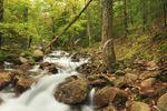 Hiking Trail Beside Jordan Stream, Acadia National Park, Maine, USA