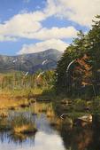 Marsh Near Daicey Pond, Baxter State Park, Millinocket, Maine, USA