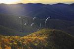 View near Brown Mountain, Shenandoah National Park, Virginia, USA