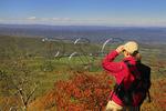 South Marshall,  Appalachian Trail, Shenandoah National Park, Virginia, USA