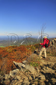 North Marshall,  Appalachian Trail, Shenandoah National Park, Virginia, USA