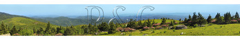 On Grassy Ridge, Look at Jane Bald, Roan Mountain, Tennessee / North Carolina, USA