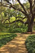 FORMAL GARDENS, WASHINGTON OAKS GARDENS STATE PARK, PALM COAST, FLORIDA, USA