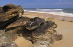 COQUINA ROCKS, WASHINGTON OAKS GARDENS STATE PARK, PALM COAST, FLORIDA, USA