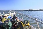 Cumberland Island National Seashore Ferry, Georgia, USA