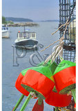 Lobster trap floats, Stonington Harbor, Maine