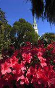 Saint Helenas Church, Beaufort, South Carolina, USA