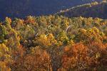 Doyles River Overlook, Appalachian Trail, Shenandoah National Park, Virginia, USA