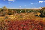 Bear Rocks Trail, Dolly Sods Wilderness, Hopeville, West Virginia, USA