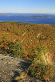 View of Penobscot Bay From Bald Rock Mountain Trail, Camden, Maine, USA