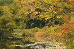 Little Long Pond, Little Long Pond Loop Carriage Road, Acadia National Park, Mount Desert Island, Maine, USA
