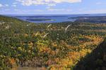 Beech Cliff Trail, Beech Mountain, Acadia National Park, Mount Desert island, Maine, USA