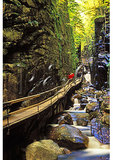 In the Flume, Franconia Notch, New Hampshire