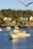 Carvers Harbor, Vinalhaven, Maine, USA