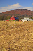Peaslee's Vermont Potatoes, Guildhall, Vermont, USA