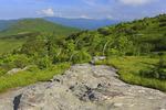 Art Loeb Trail, Blue Ridge Parkway, North Carolina, USA