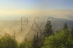 Sunrise, Clingmans Dome, Great Smoky Mountains National Park, North Carolina, Tennessee, USA