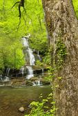 Toms Branch Falls, Deep Creek, Great Smoky Mountains National Park, North Carolina, USA